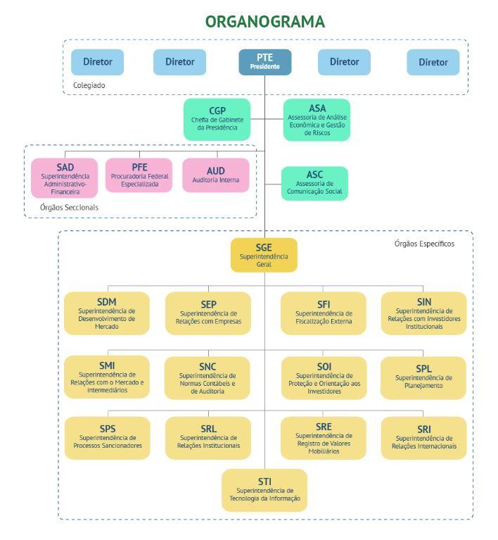 organograma CVM