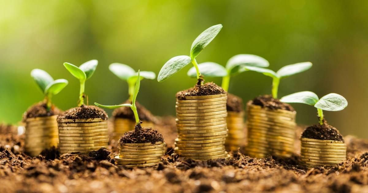 Geração de renda através dos investimentos