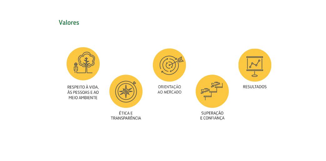 valores da empresa Petrobras