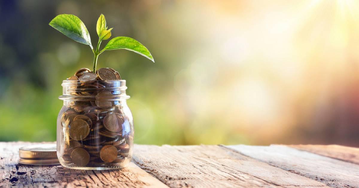 Você sabe o que é Dividend Yield? Leia este artigo para entender melhor.