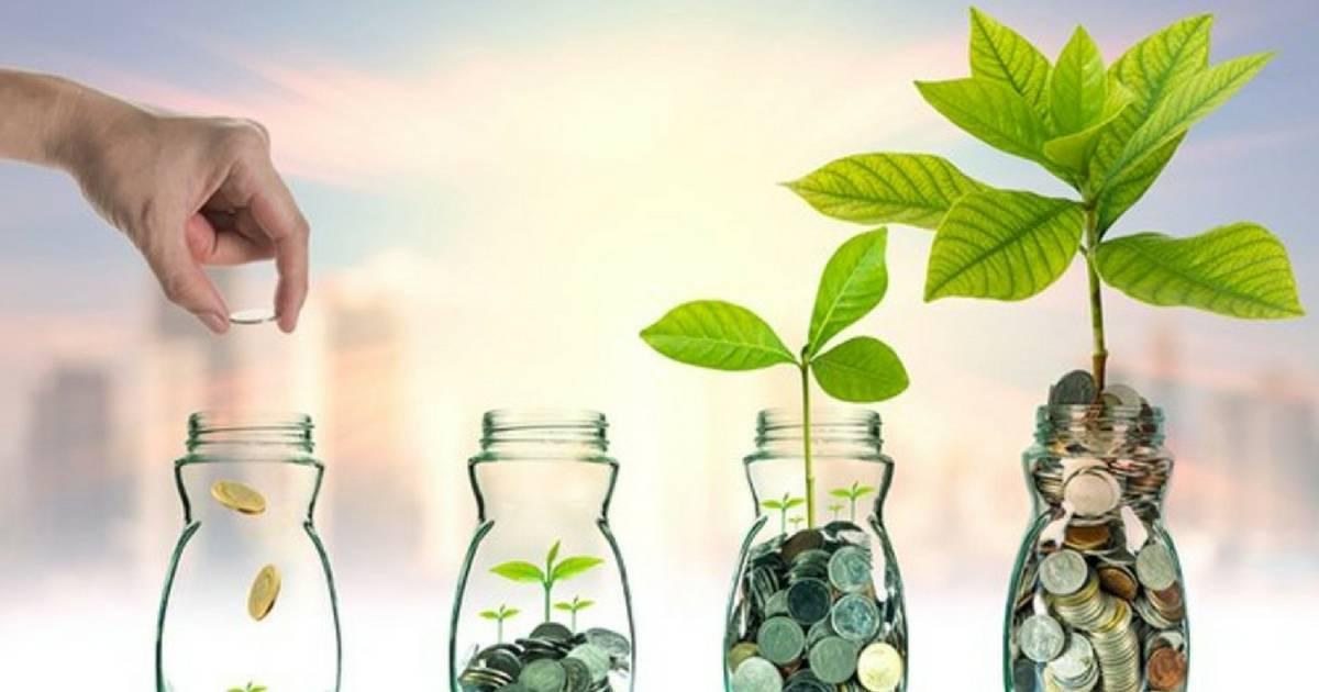 Saiba como começar a investir com pouco dinheiro