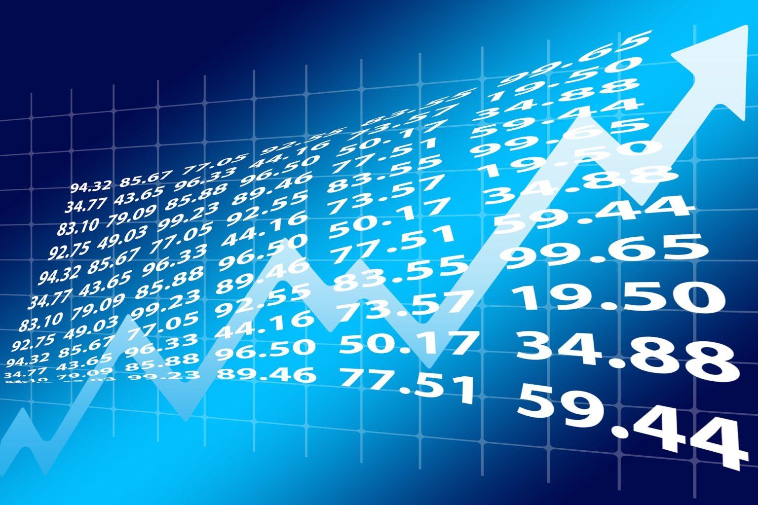 conclusão investimento em bolsa de valores