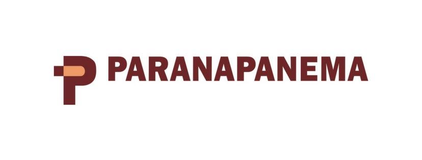 Radar do Mercado: Paranapanema (PMAM3) – Relevante acionista aumenta participação societária na companhia