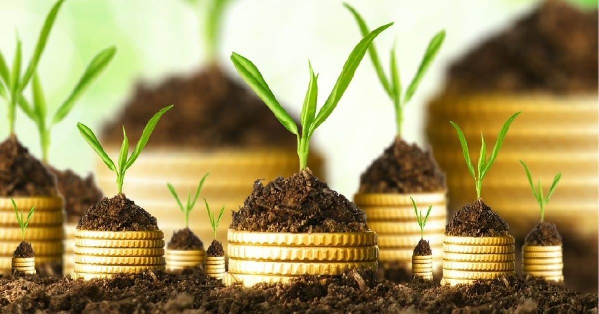 Enxerguei nos dividendos uma maneira segura de investir na bolsa de valores