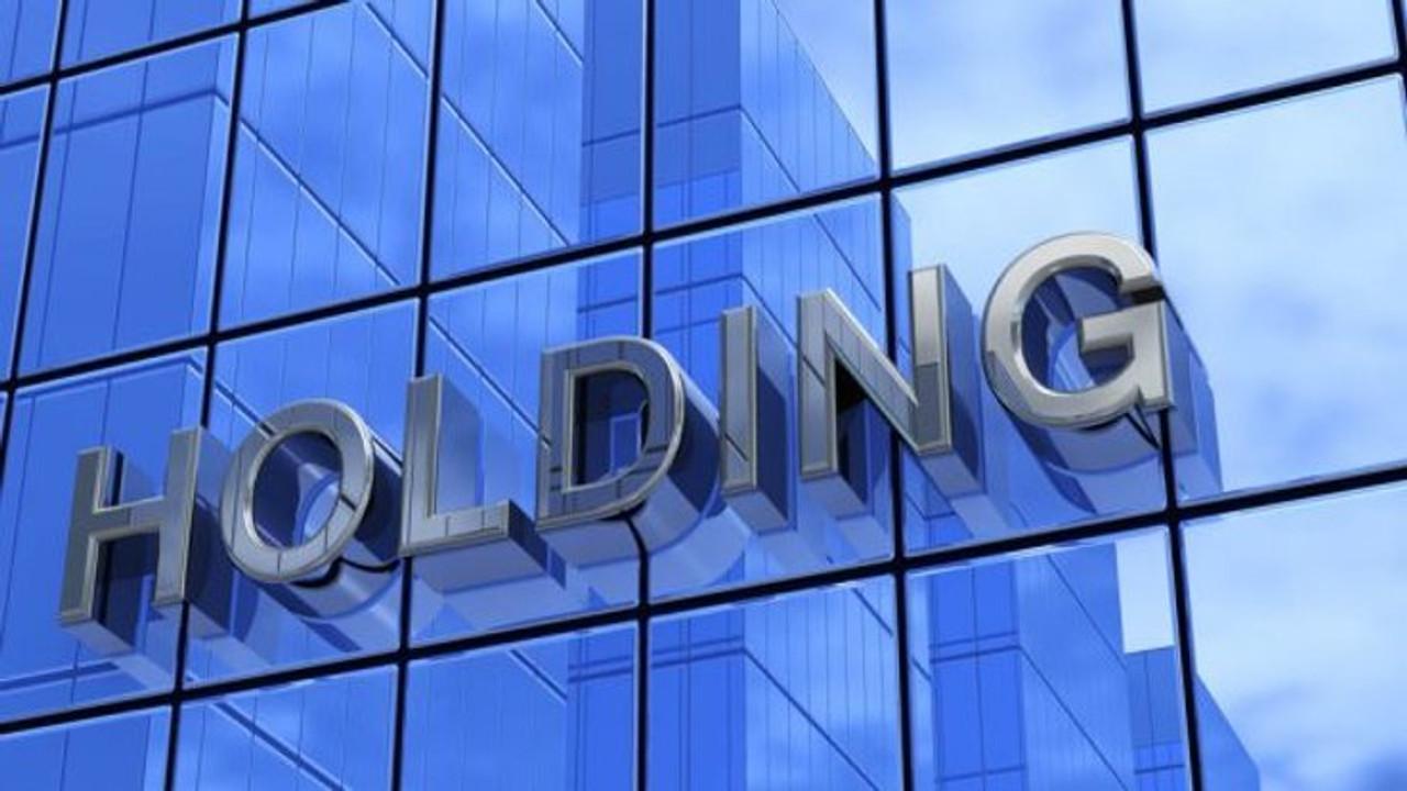 o que é uma holding empresarial