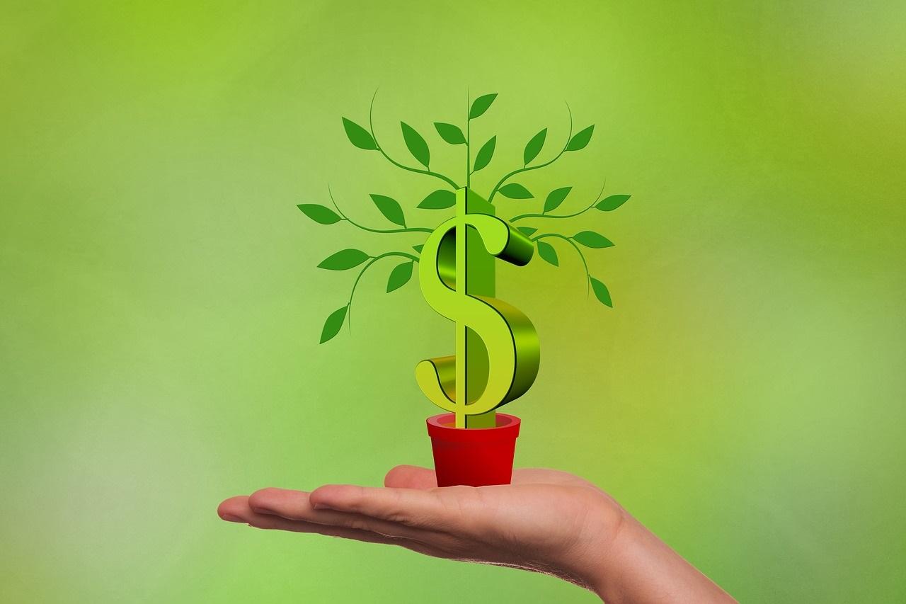 Rendimento Bruto: o que significa essa rentabilidade?
