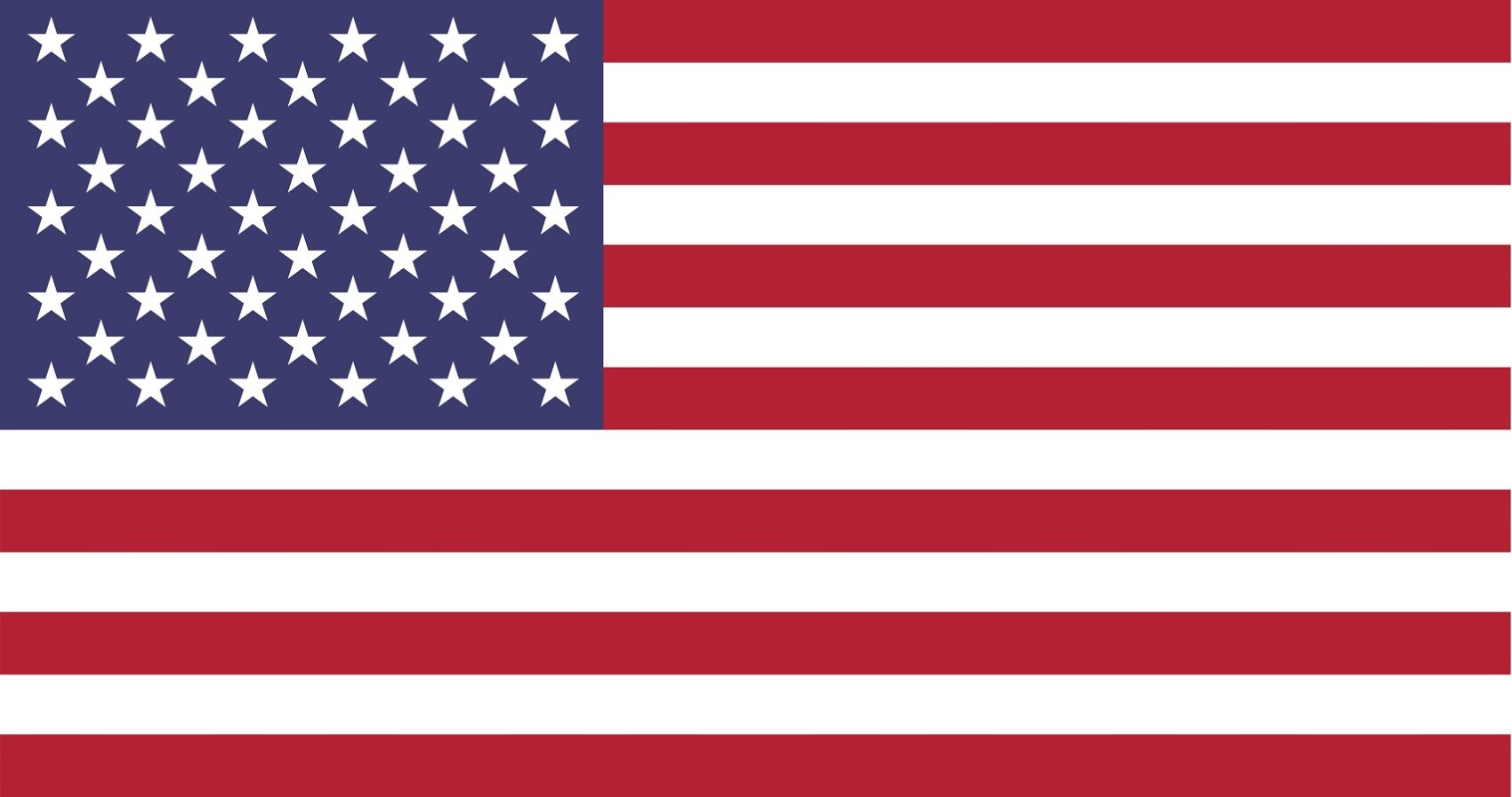 LLC: entenda como funcionam as socielidades limitadas nos EUA