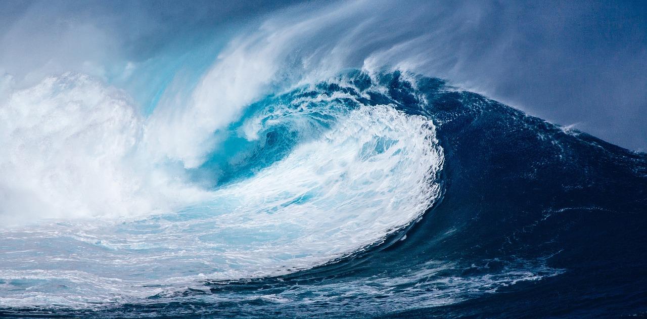 Oceano Azul: entenda como identificar o melhor mercado para um negócio
