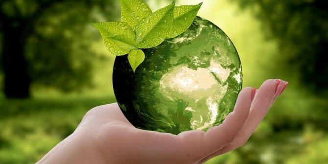 Sustentabilidade empresarial: saiba mais sobre esse conceito