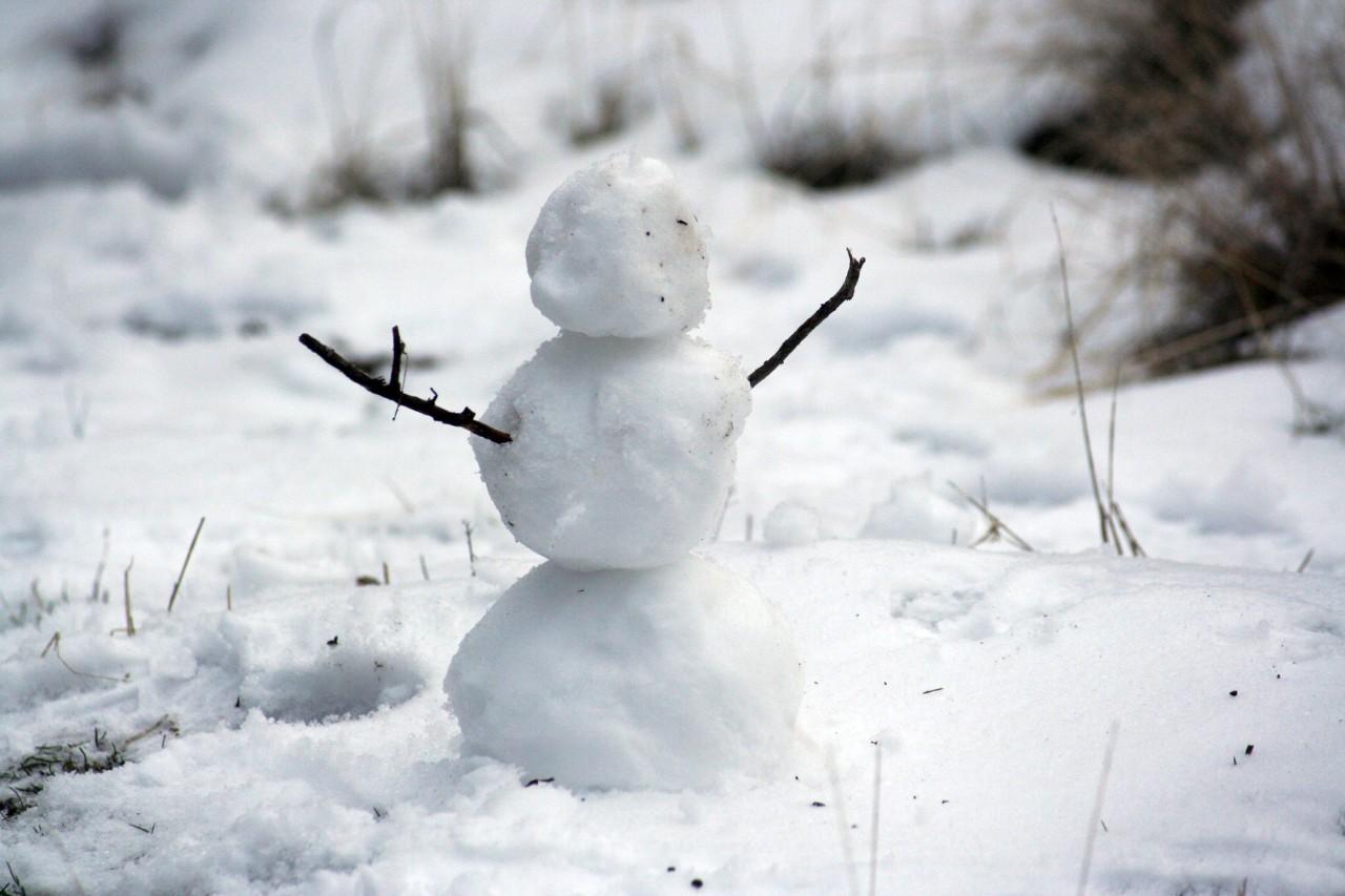 método bola de neve