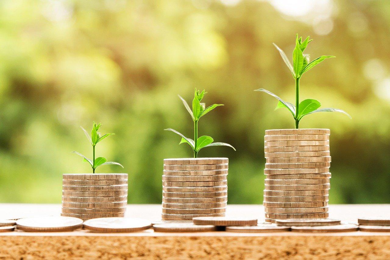 Cashback: como funciona essa prática? Ela é sustentável para as empresas?