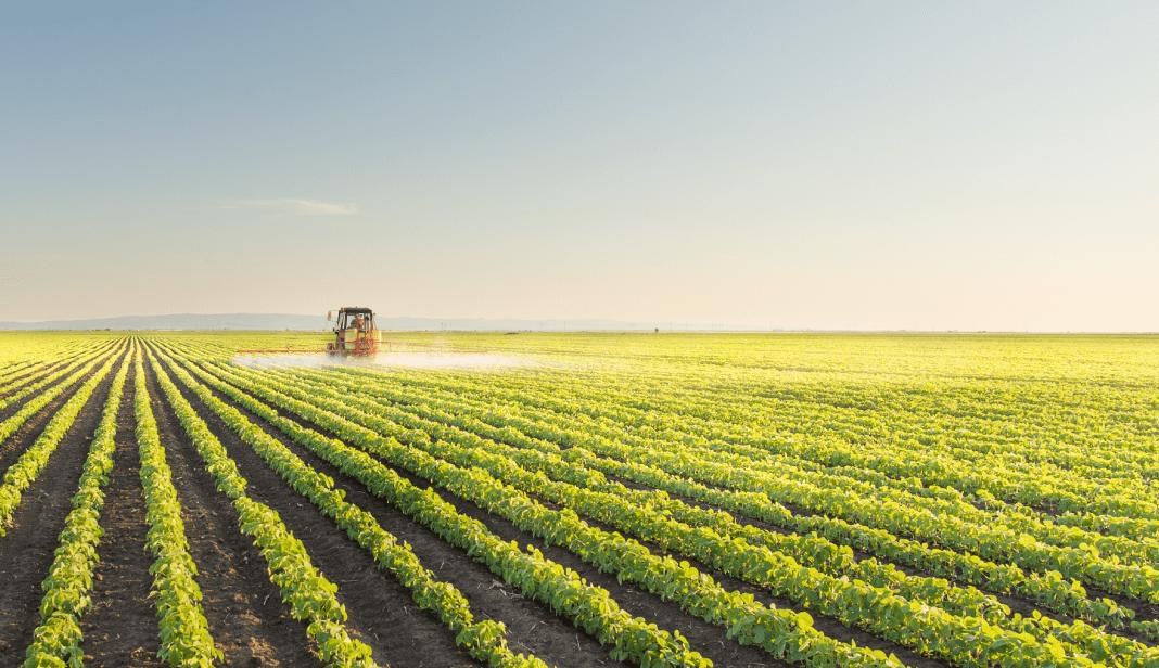 LCA: como investir em uma Letra de Crédito do Agronegócio?
