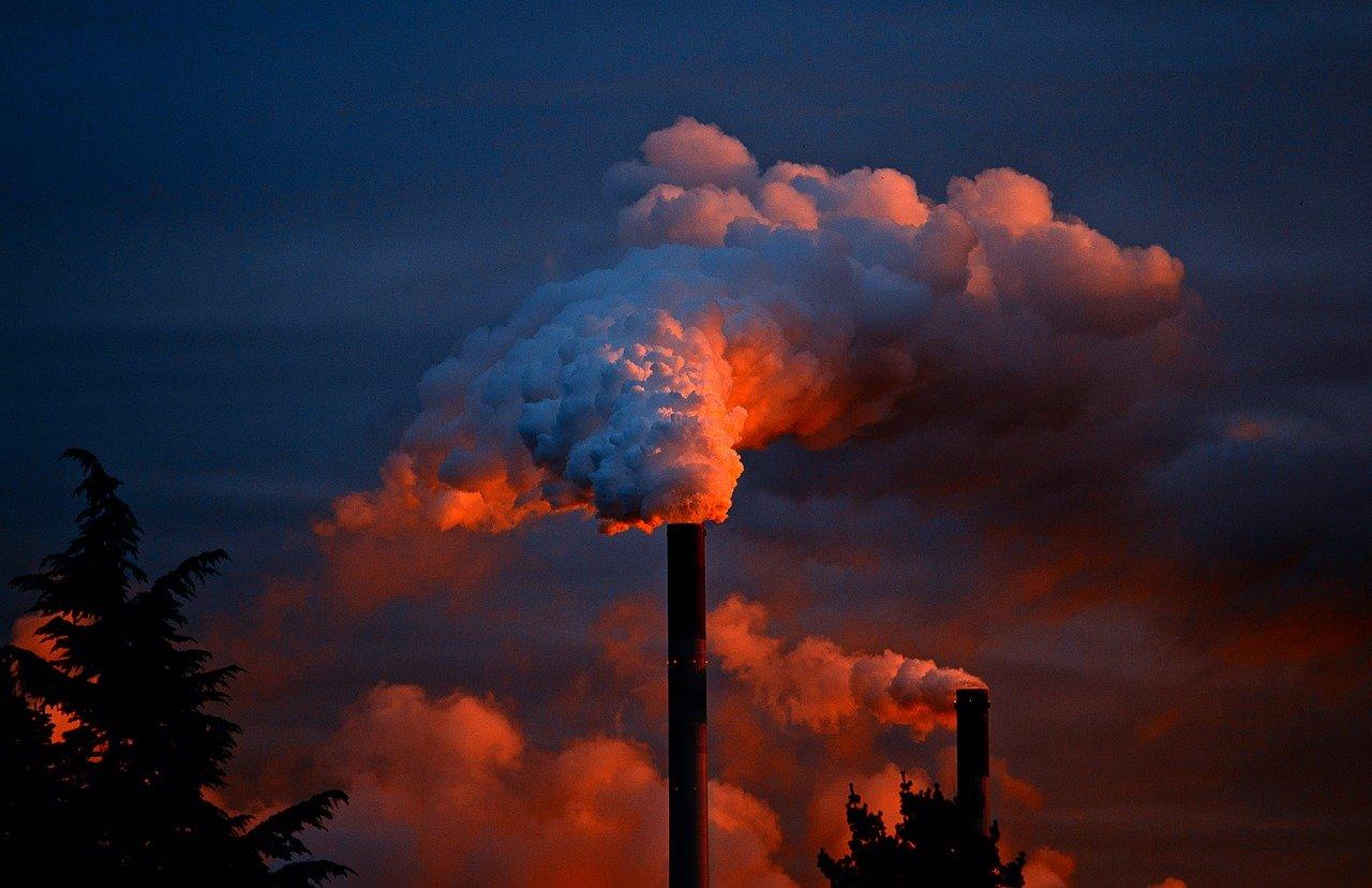 Crédito de descarbonização: entenda o que é e como funciona o CBIO