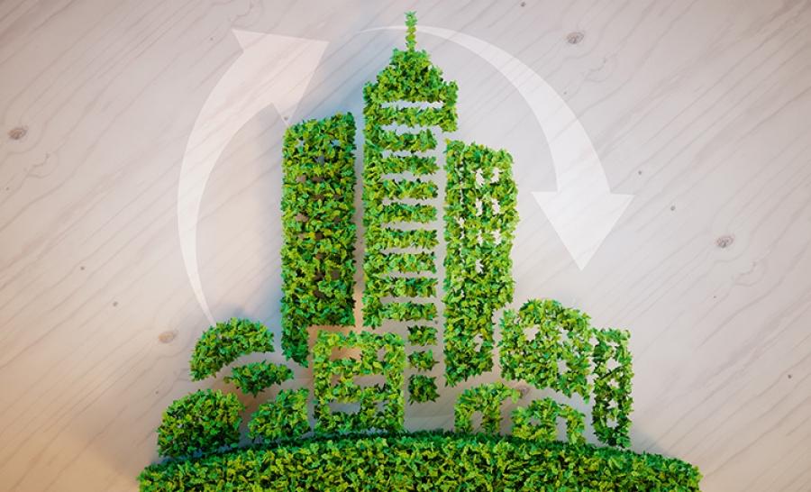 Empresas sustentáveis: o que são e quais são as principais no Brasil?