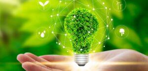 ETFs ESG: o que é e como investir nos fundos de índices sustentáveis?