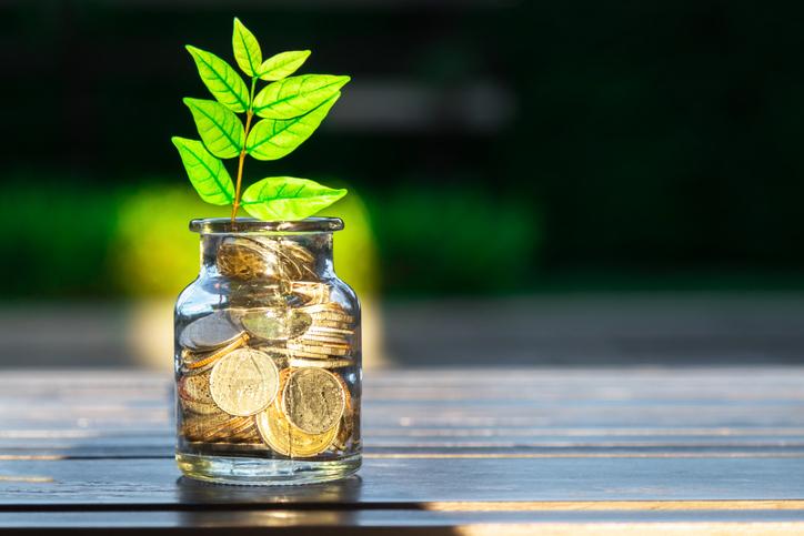Fundos ESG: o que é como funcionam esses fundos de investimento