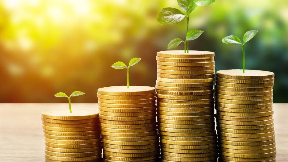 Investimentos responsáveis: o que são e quais são os principais critérios?