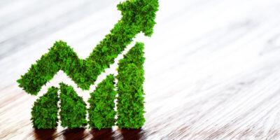 ESG Index: saiba o que são e como funcionam os índices ESG