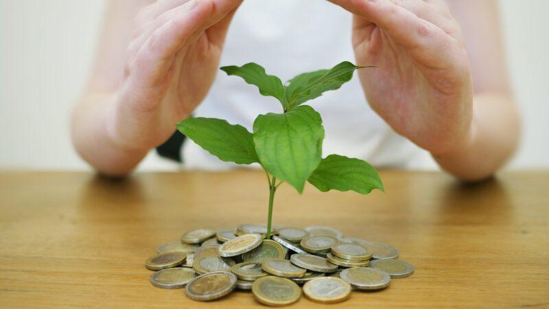Forward guidance: entenda como funciona esse mecanismo econômico