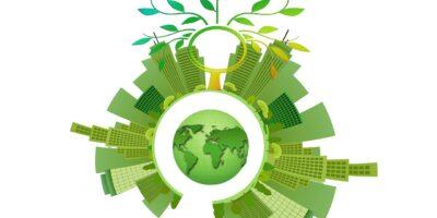 Tripé da sustentabilidade: entenda o que é e qual a sua importância