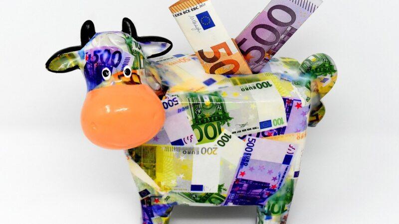 """Ações """"vacas leiteiras"""": o que são e como encontrá-las?"""