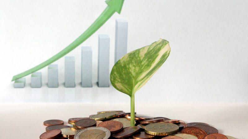 Investidor de Valor: 3 passos para se tornar um value investor